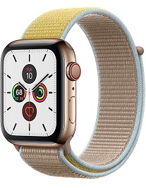 Apple Watch Edition 40mm Series 5 (LTE)
